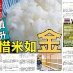 雜誌功課 – 搶米潮