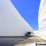 【日本.立山黒部】立山「雪壁」- 四天假期也能看雪山