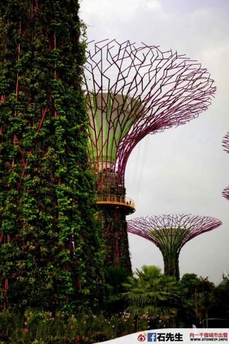 singapore_67