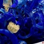 【美國.西雅圖】Chihuly Garden and Glass,漂亮極致的玻璃藝術品