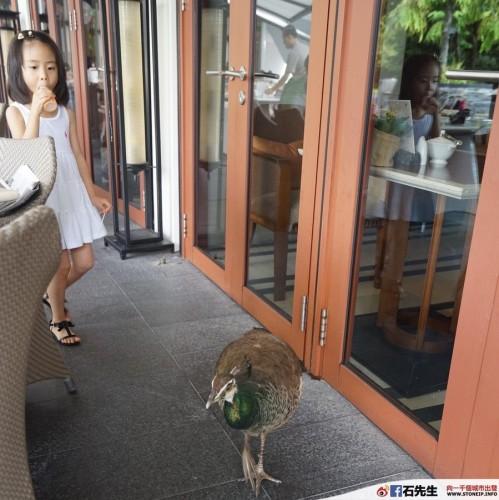 capella hotel singapore2