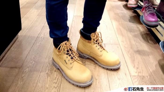 cat-shoe1