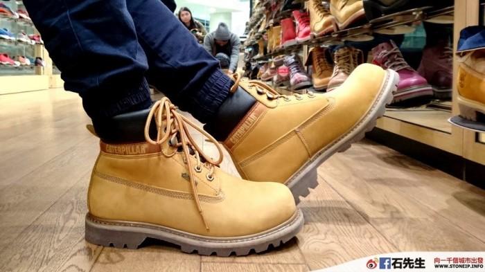 cat-shoe2