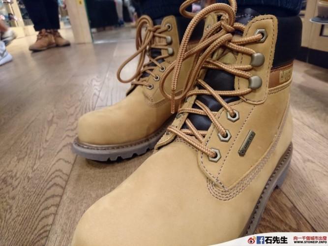 cat-shoe4