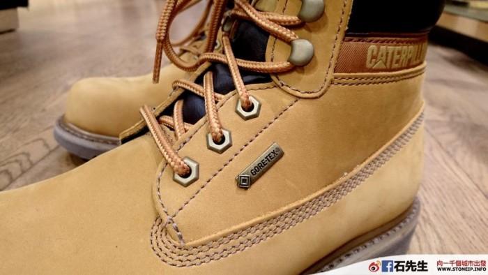 cat-shoe5