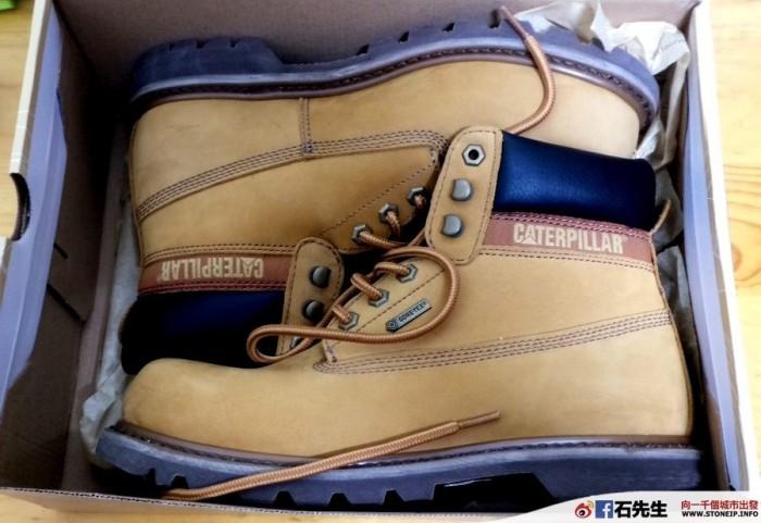 cat-shoe6