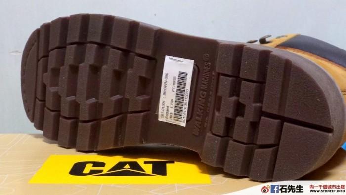 cat-shoe7