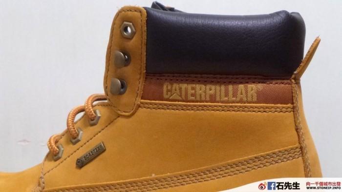 cat-shoe8