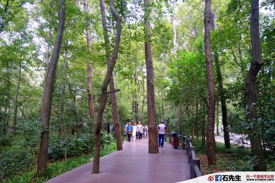 nanjing-hong-kong-express-shanghai-travel-experience52