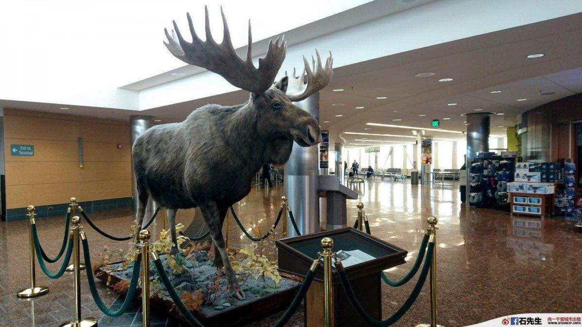 us-travel-alaska-delta-16