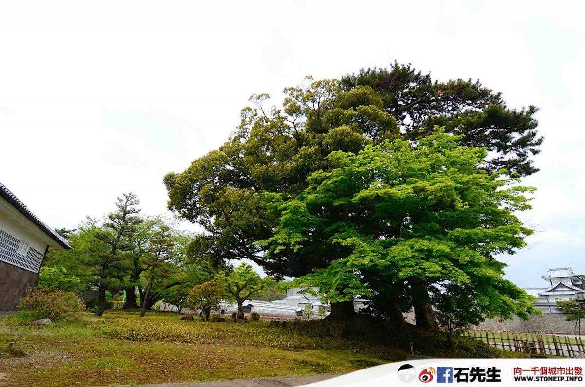 japan_travel_tateyama_kurobe_kanazawa_toyama_tokyo_Day_06_057