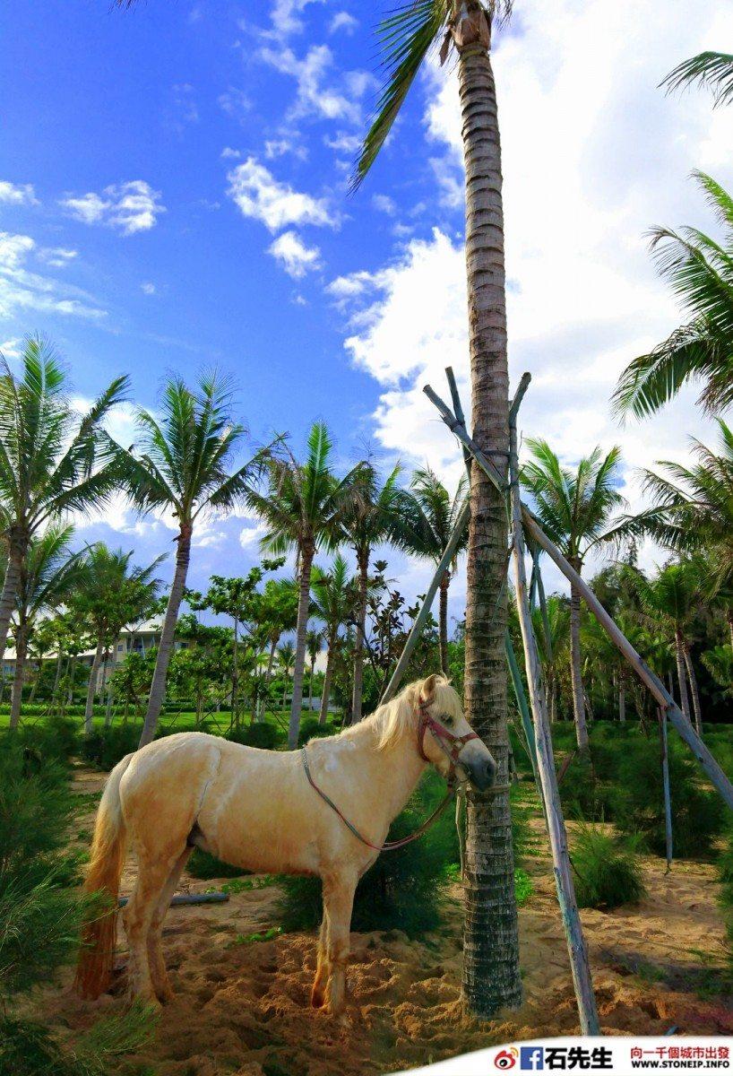 Hainan_Sofitel_Sanya_Leeman_Resort_121