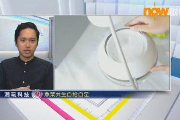 now_news_screen_01